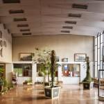 A betléri Andrássy-kastély (ma Szlovák Nemzeti Múzeum – Betléri Andrássy Múzeum) pálmái a rozsnyói vasútállomáson, 2015. Fotó: Villányi Csaba